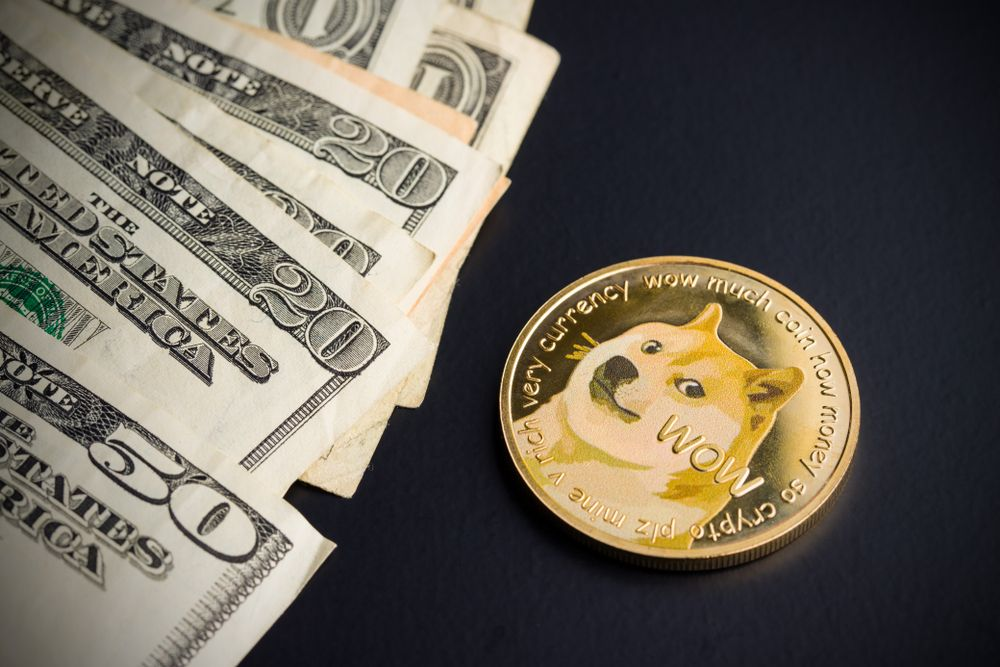 Rarestone Capital founder Charles Read on how DOGE changes the landscape of investments